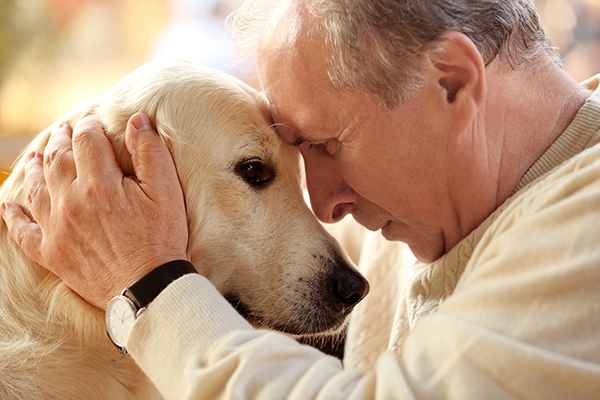 Animals Provide Emotional Support for Seniors